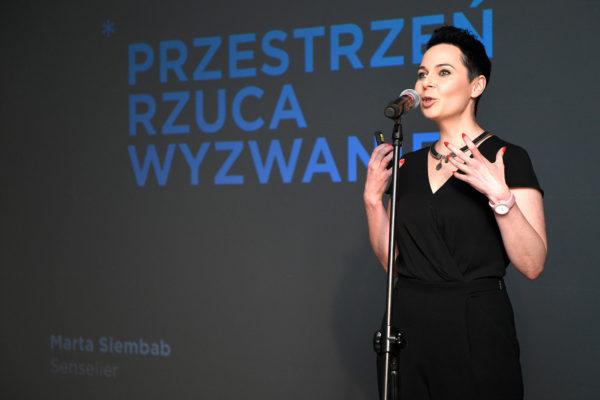 Tub¦ůdzin-Design-Days-w-Rzeszowie_39